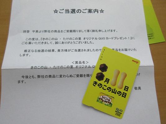 kinokonoyama.JPG